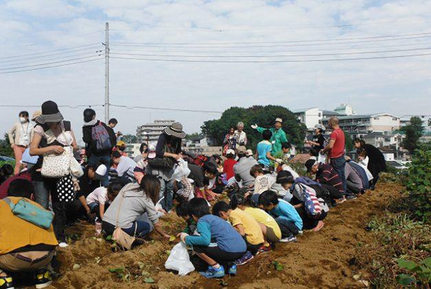 新倉ふるさと民家園「秋の収穫祭」が行われました