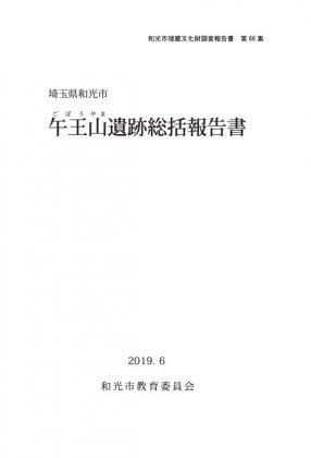 午王山遺跡総括報告書