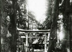 新倉氷川八幡神社