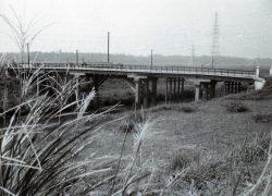 芝宮橋付近